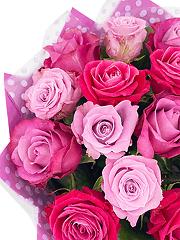Букеты из малиновых роз - купить недорого с бесплатной доставкой в Москве | Интернет-магазин цветов Flower-shop.ru
