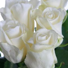 Роза Апре Ски