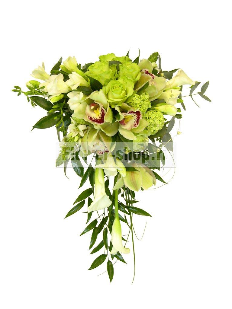 Купить цветы рускус итало в москве вышитые цветы гладью купить