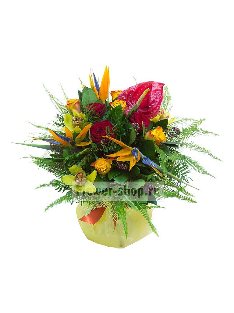 Купить букет из стрелиция москва, где купить в минск свежие дешевые цветы