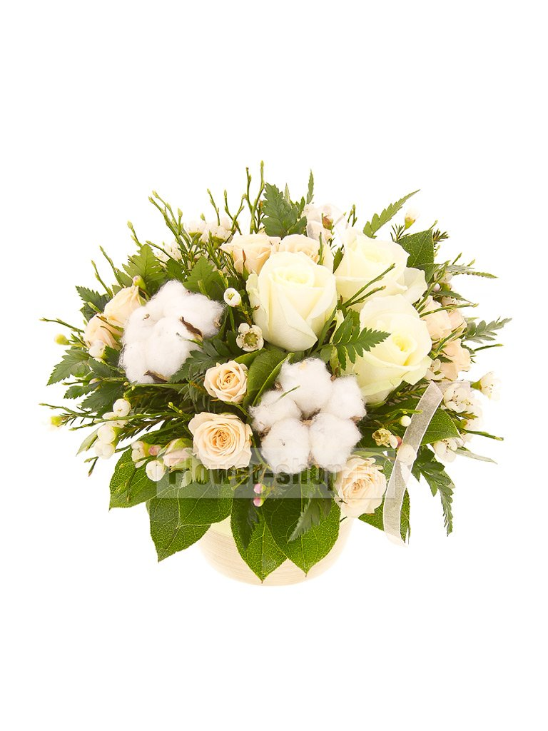 Купить цветы хлопчатник, оригинальный букет для девушки не из цветов