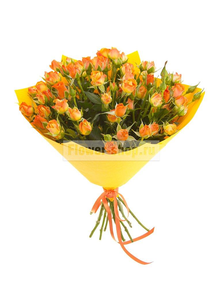 Оптовая торговля цветами и другими растениями оквэд 2017