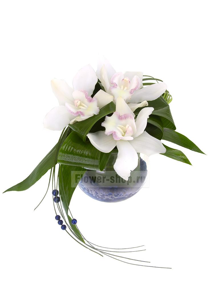 Композиция из орхидей в вазе «Пролив» - купить по цене 3690 руб. с бесплатной доставкой в Москве
