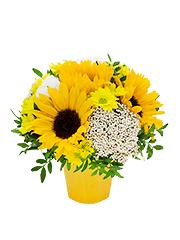 Заказ цветов подсолнухи доставка цветов в санкт-петербурге интернет магазин