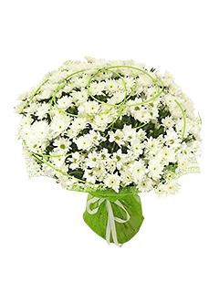 Доставка цветов тверская заказ цветов по нижнему новгороду