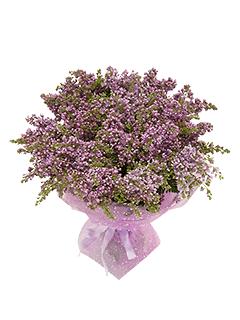 Flower shop доставка цветов сирени заказ цветов русский букет