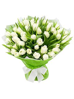 Где купить белые тюльпаны в самаре где купить маки цветы в москве
