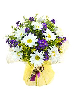 Купить астры цветы в москве