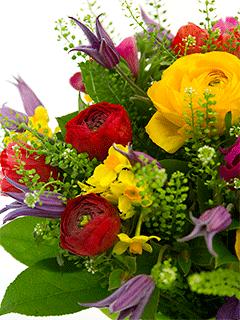 Палитра заказ цветов где купить цветы на юго западной