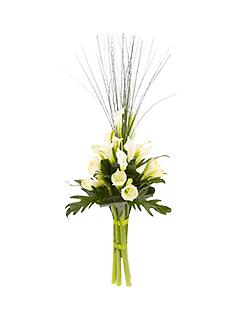 Купить цветы на метро сокол зачем женщинам цветы на 8 марта
