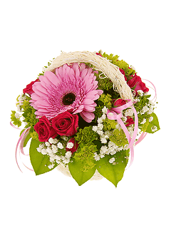 Цветы купить кузьминки комнатные цветы купить в белоруссии