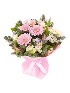 Букет ярко нежно розовых гербер, купить комнатные растения в орше
