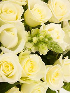 Корзины из белых роз - купить недорого с бесплатной доставкой в Москве | Интернет-магазин цветов Flower-shop.ru