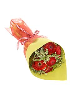 Доставка цветов на братиславской тюльпаны в нижнем новгороде купить
