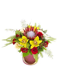Купить цветы у метро речной вокзал купить цветы в спб дешево