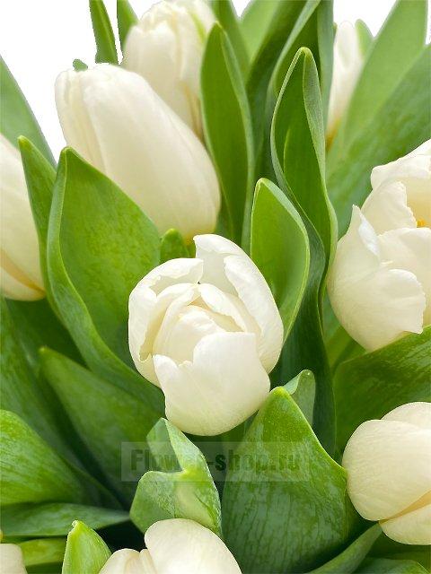заказ цветов в коробке москва