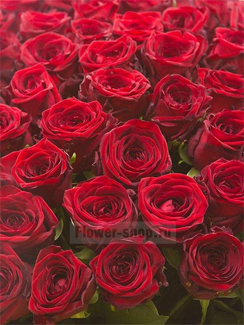 Заказать доставку цветов в москве