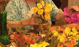Цветы продлевают жизнь и улучшают память!