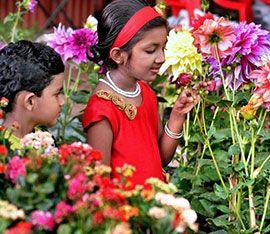 В Каликуте открывается традиционный фестиваль цветов
