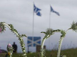 Будет ли у Шотландии официальный