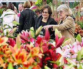 В Сиднее проходит национальная выставка цветов