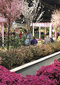 В Пенсильвании откроется масштабная выставка цветов