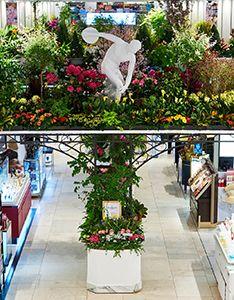 На знаменитой цветочной выставке Мэйси представят мини-копии лучших цветущих садов США