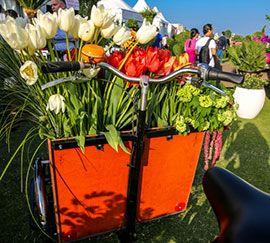 На Ближнем Востоке прошло фееричное цветочное шоу