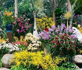 В Шанхае открылся международный фестиваль цветов